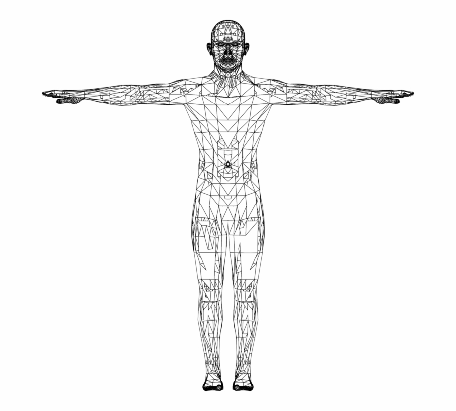 Website Wireframe Human Wire-frame Model Low Poly Diagram