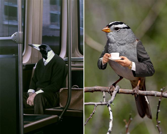 26幅「有手鳥」惡搞照片,如果變成現實會怎樣?