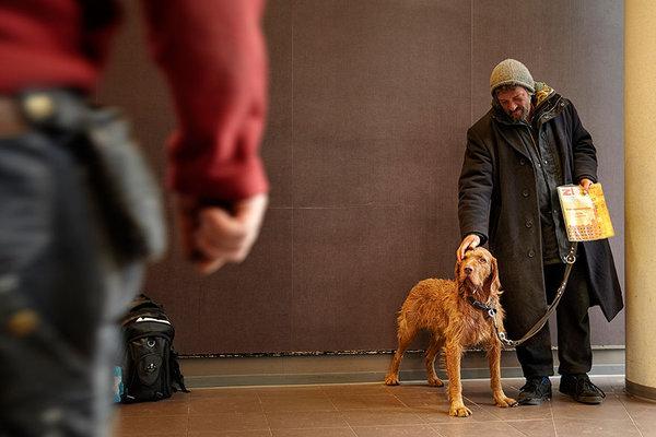 17幅照片証明狗永遠對人類不離不棄,無論貧富,即使飢寒交迫⋯⋯