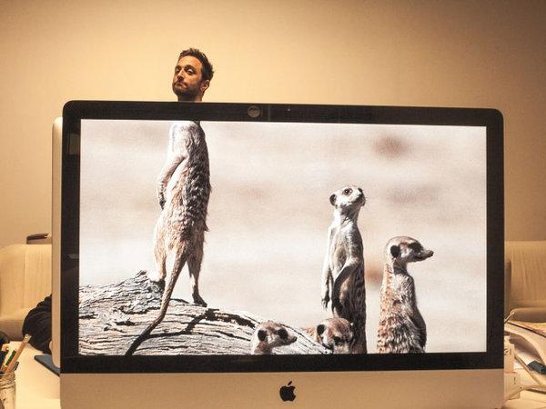 25幅辦公室另類寫照,他們叫這作「桌上的野生動物園瀏覽器」?!