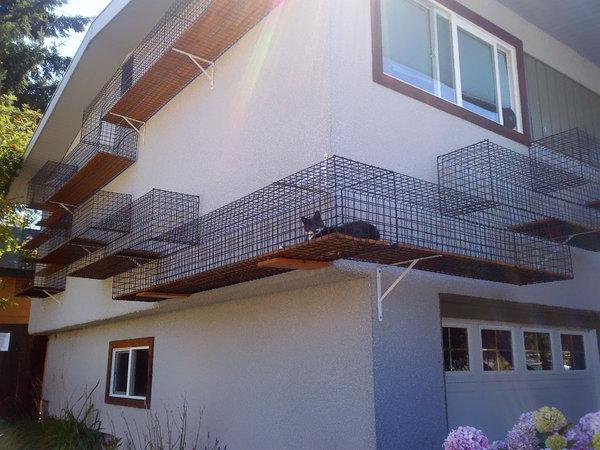 25個愛貓人士必備的終極超酷家具,看了你也想成為貓咪!
