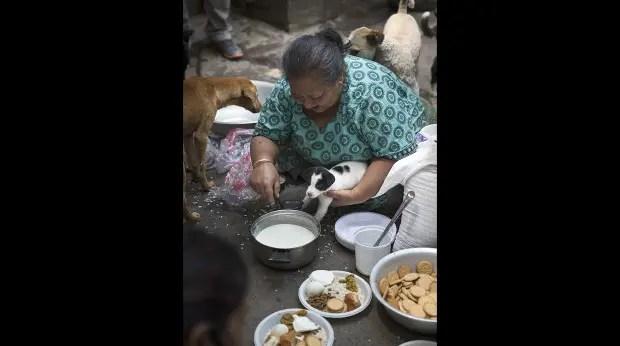 mujer-ayuda-perros-nepal-terremoto-cachorro
