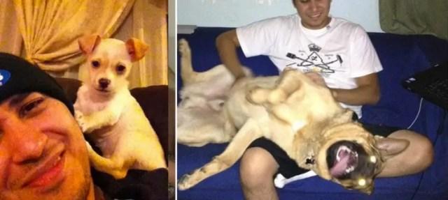 perros-grande-cree-cachorros-19