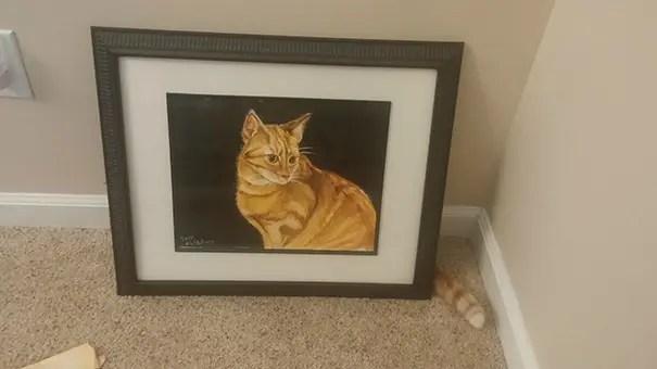 momento preciso gatos 3