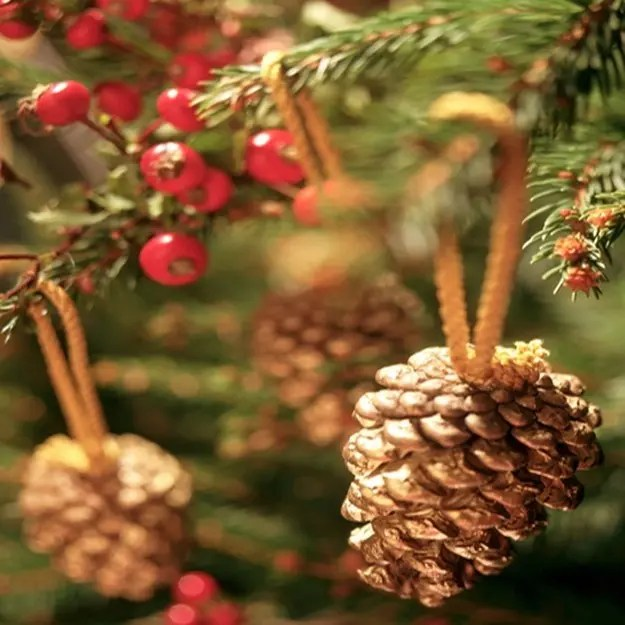 arboll-navidad-pinas