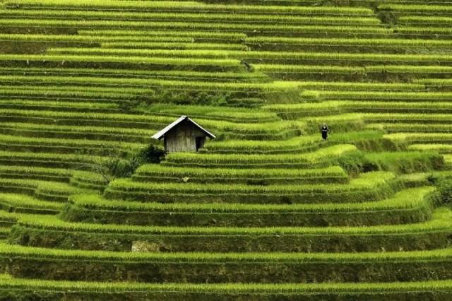 contrastes-paisajes-vietnam-4