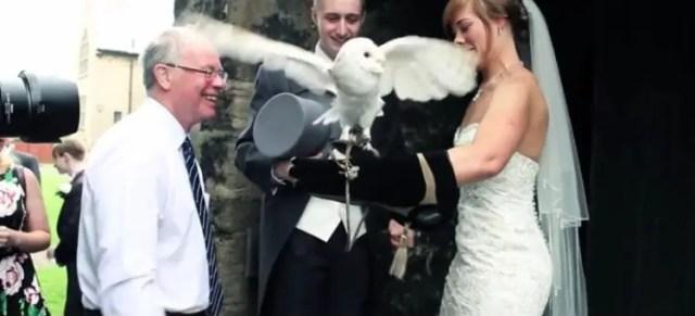 buho-entrega-anillos-de-boda4