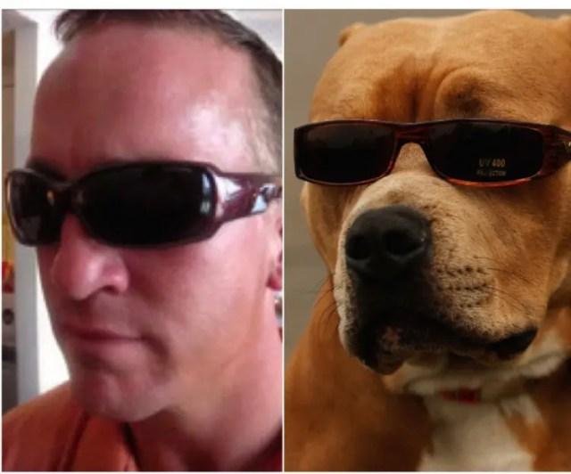 perro peyton manning 5