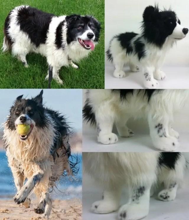 perritos-clonados-en-peluche-20