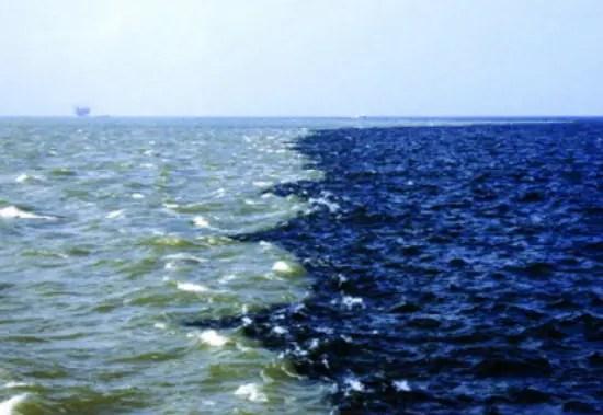 la-verdad-de-zona-muerta-golfo-de-mexico