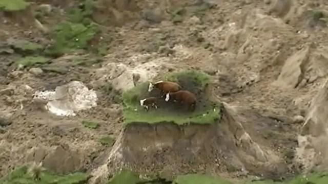 terremoto-nueva-zelanda-1