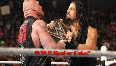 is WWE Real Or Fake
