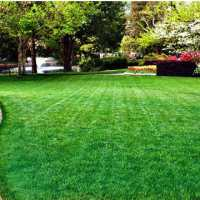 How To Calculate Your Lawn's Square Footage?