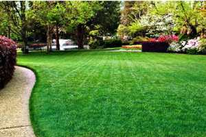 How To Calculate Your Lawn's Square Footage