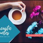 100+ best Sarcatic Quotes on Love, Life and Work