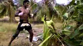 Martial Artist Kicks Down Banana Tree