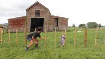 How To Teach A Baby To Climb A Fence