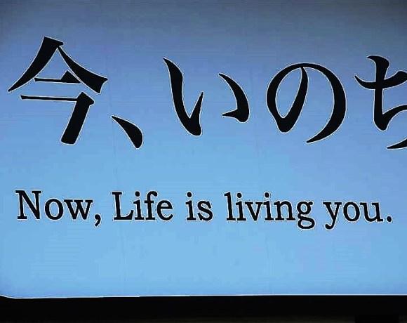 Şimdi, Hayat Seni Yaşıyor – Kyoto