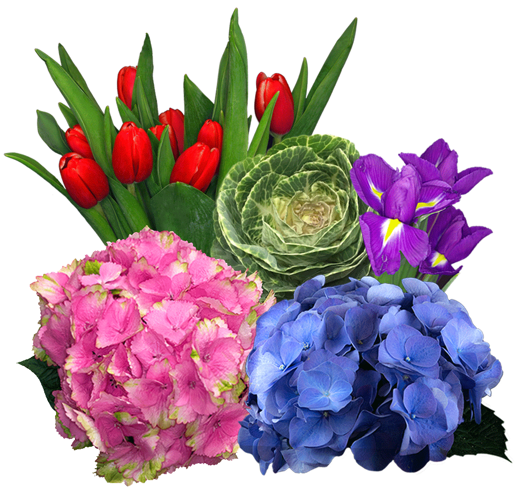 flowers by the bunch