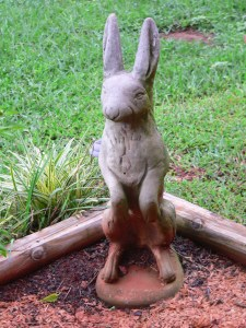 Is this a rabbit or a hare? I don't care, he sits in the corner all winter, and watches my tomatoes and basil and peppers all summer. He even holds up some of the vines sometimes.