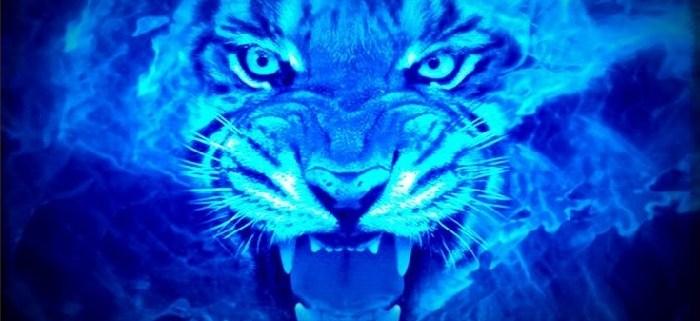 Tigre-Fuego