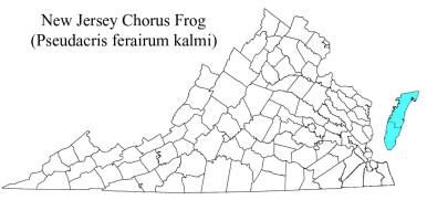 Known distribution of Pseudacris kalmi in Virginia