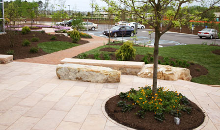 commercial lawn care - landscaping