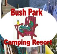 Bush-Park-Camping.jpg