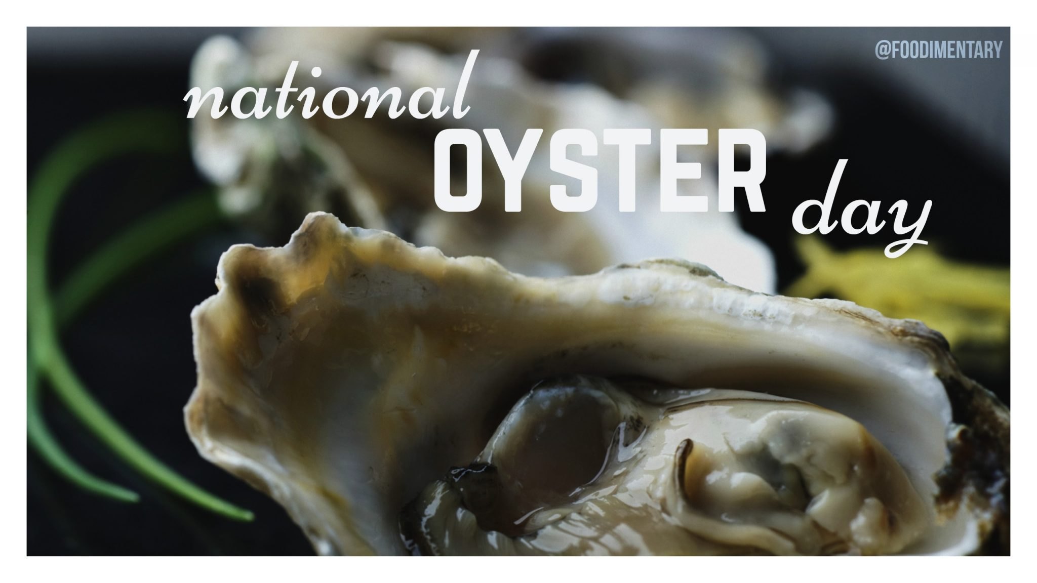 Three Ways to Get Up Close & Personal to the Oyster in Virginia's River Realm