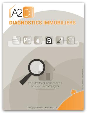 Dossier professionnel - Agence de diagnostics immobiliers