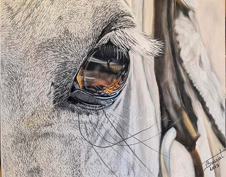 Dessin aux pastels secs d'un oeil de cheval blanc en gros plan réalisé par l'artiste peintre et portraitiste animalière Virginie Brassart