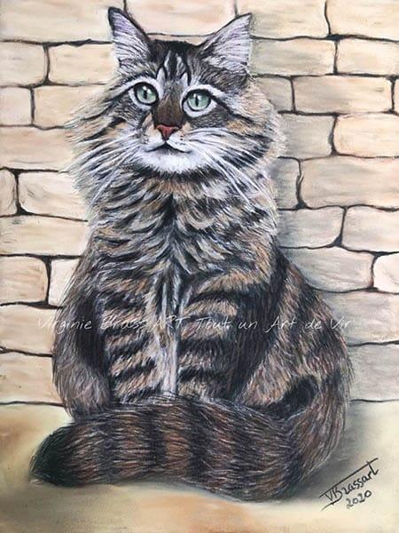 Dessin aux pastels secs d'un chat tigré sur fond de mur de pierre réalisé par l'artiste peintre Virginie Brassart