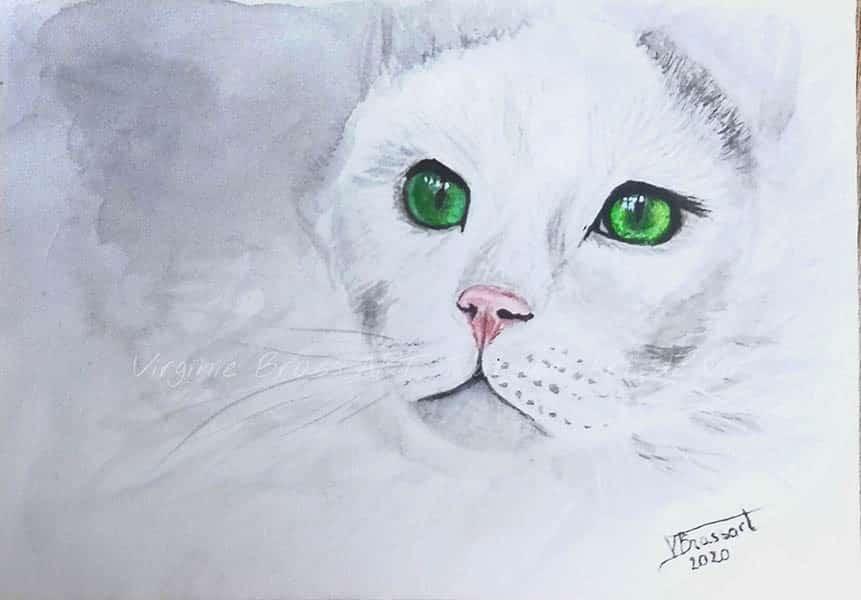 Peinture à l'aquarelle d'une tête de chat blanc aux yeux verts réalisé par l'artiste peintre Virginie Brassart