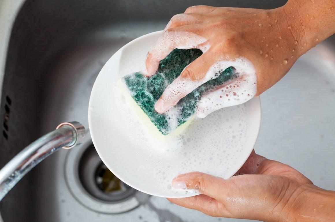 detersivo per piatti - spugna