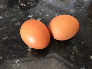 huevo - 1