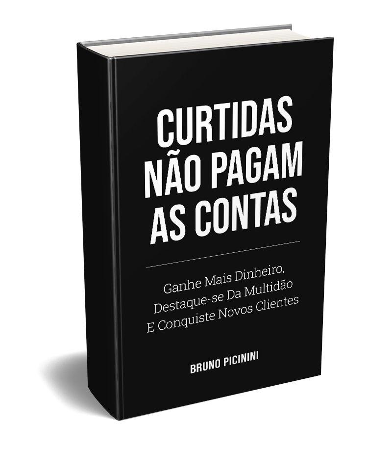 Livro Curtidas Não Pagam As Contas pdf download