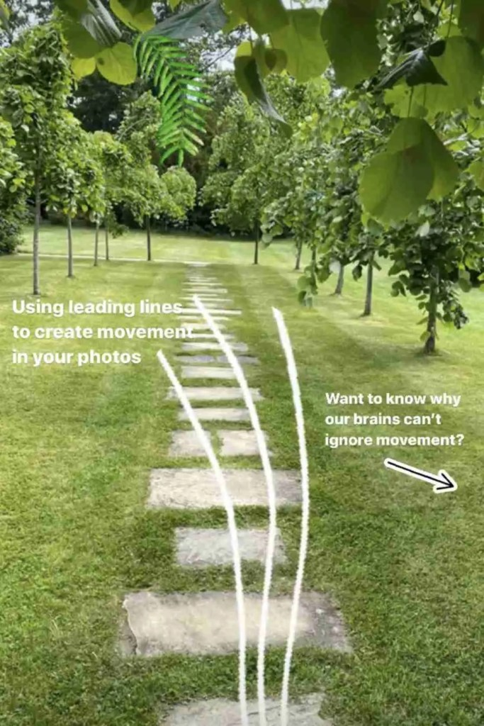 leading lines photography neuromarketing