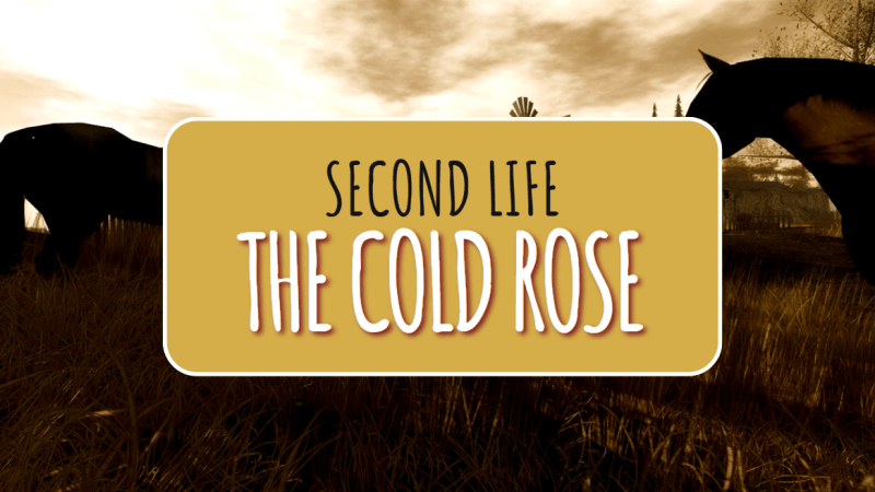 The Cold Rose in Second Life: Realism and Rustic Chic Style