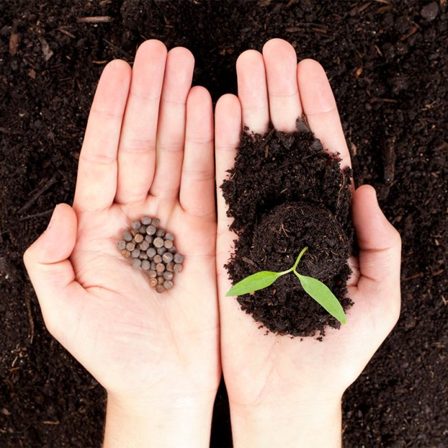 5 Steps to Plant the Seeds to Grow Your Network