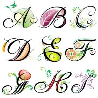 Fonts and Branding