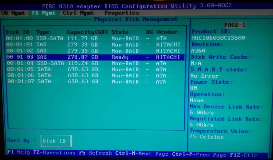 H310 - Make disk non-raid 1