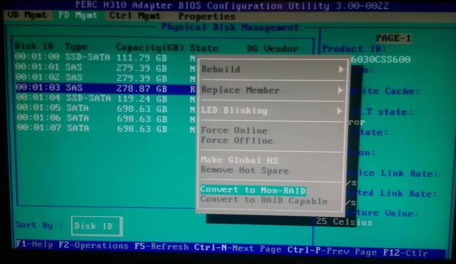 H310 - Make disk non-raid 2
