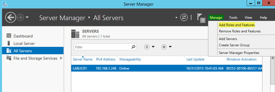 1 License Server - Add Feature and Role