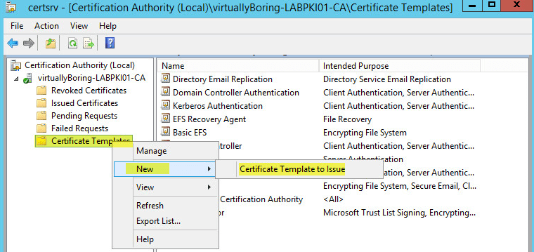 Certificate template does not show up in certsrv choice image how to setup microsoft active directory certificate services ad pki 28 certification authority create template to yadclub Images
