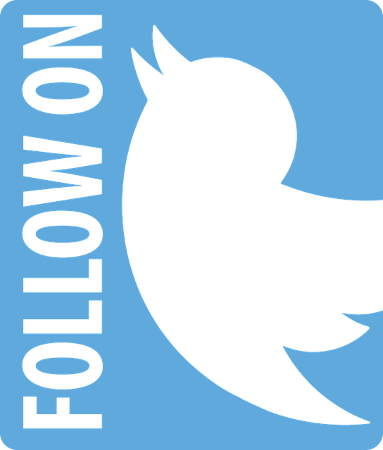 Tips in Using Twitter for Your Business