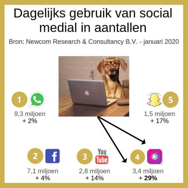 infographic dagelijks gebruik van social media