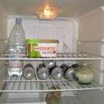 Paddy Ashdown's fridge