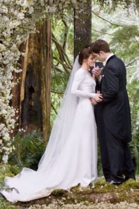 Bella Wedding Dress Twilight Breaking Down