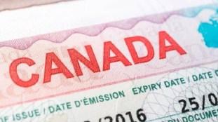 Visa pour le Canada : les refus pour les Algériens explosent