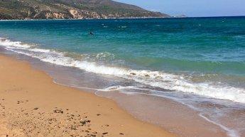 Un étudiant jordanien meurt de noyade sur une plage d'Oran